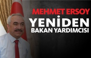 Mehmet Ersoy Yeniden Bakan Yardımcısı Oldu