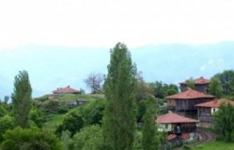 Boyabat Ardıç Köyü