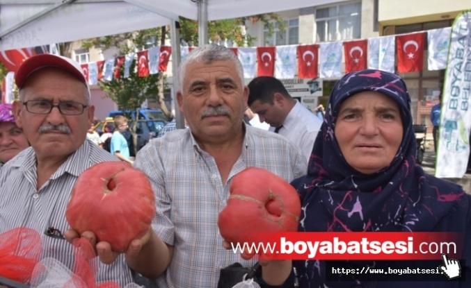 Boyabat'ta 2. Domates Festivali Yapıldı